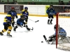 Eishockey 2010